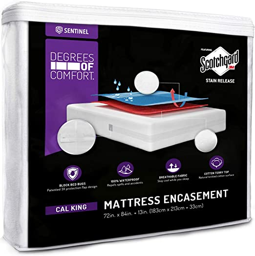 Amazon.com: Degrees of Comfort Zippered, Bed Bug Mattress Cover