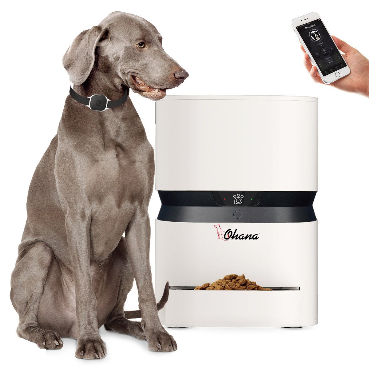 8L SmartFeeder,Ohana Automatic Food Dispenser for Cats and Dogs,Large Capacity with Voice Recorder and Timer Programmable