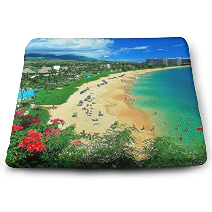 Pleasant Amazon Com Kaanapali Beach Maui Hawaii Seat Cushion Memory Interior Design Ideas Clesiryabchikinfo