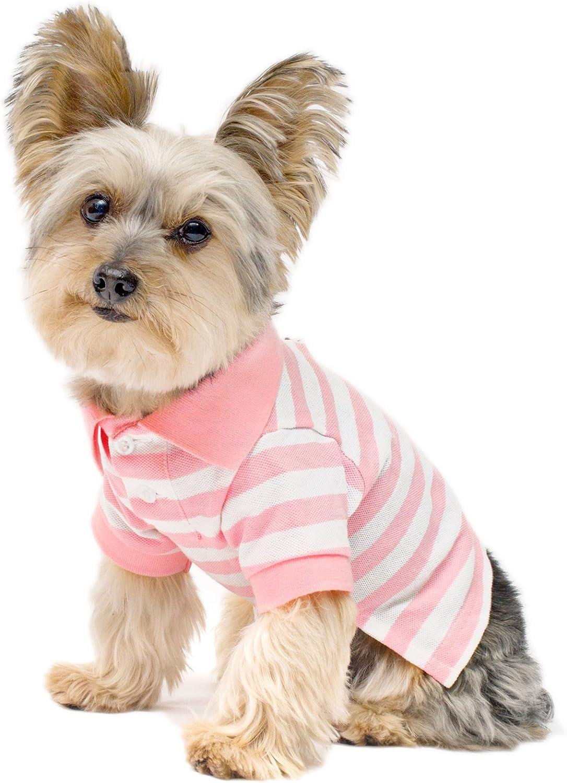 Stinky G Tropical Green Stripes Dog Stretch Polo Shirt Size #08