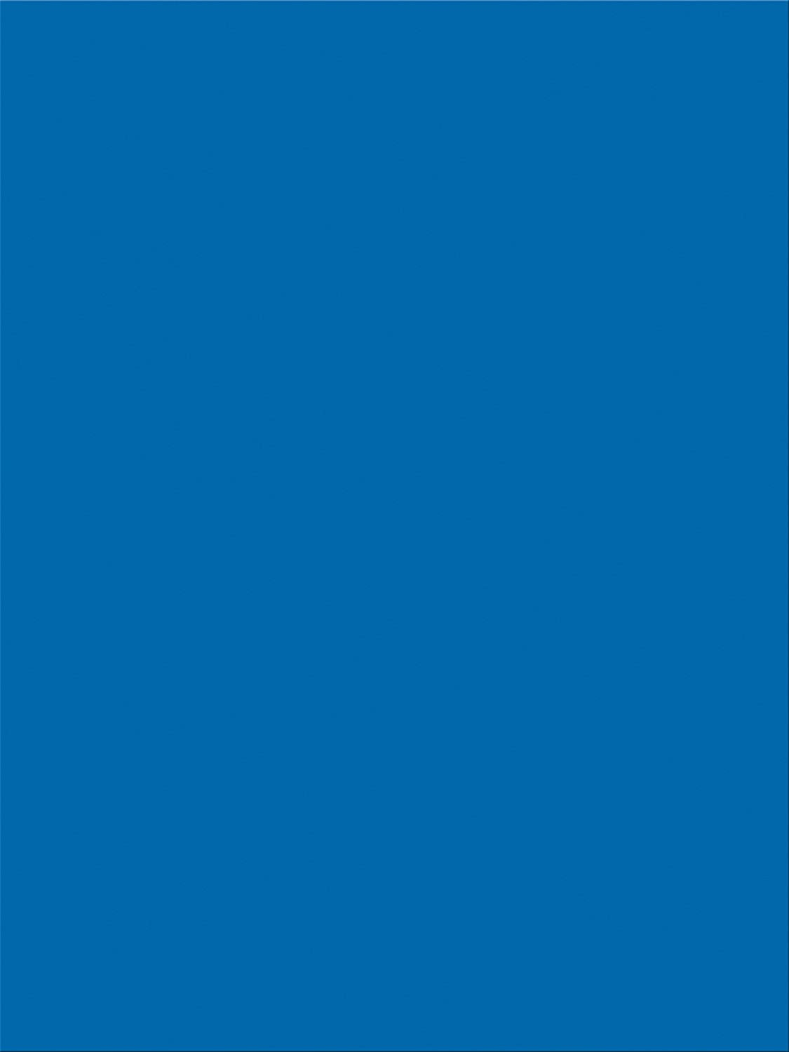 Pacon SunWorks Construction Paper, 9 x 12, 100-Count, Bright Blue (7504) 9 x 12 Pacon Corp.