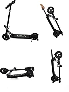 Amazon.com : Segway Ninebot ES2 Folding Electric Kick ...