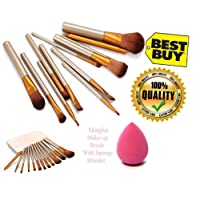 KATTI DEL COCO Professional Brushes Kit with Storage and Sponge Box for Salon and Home Users ( 14526) - Set of 12-Piece