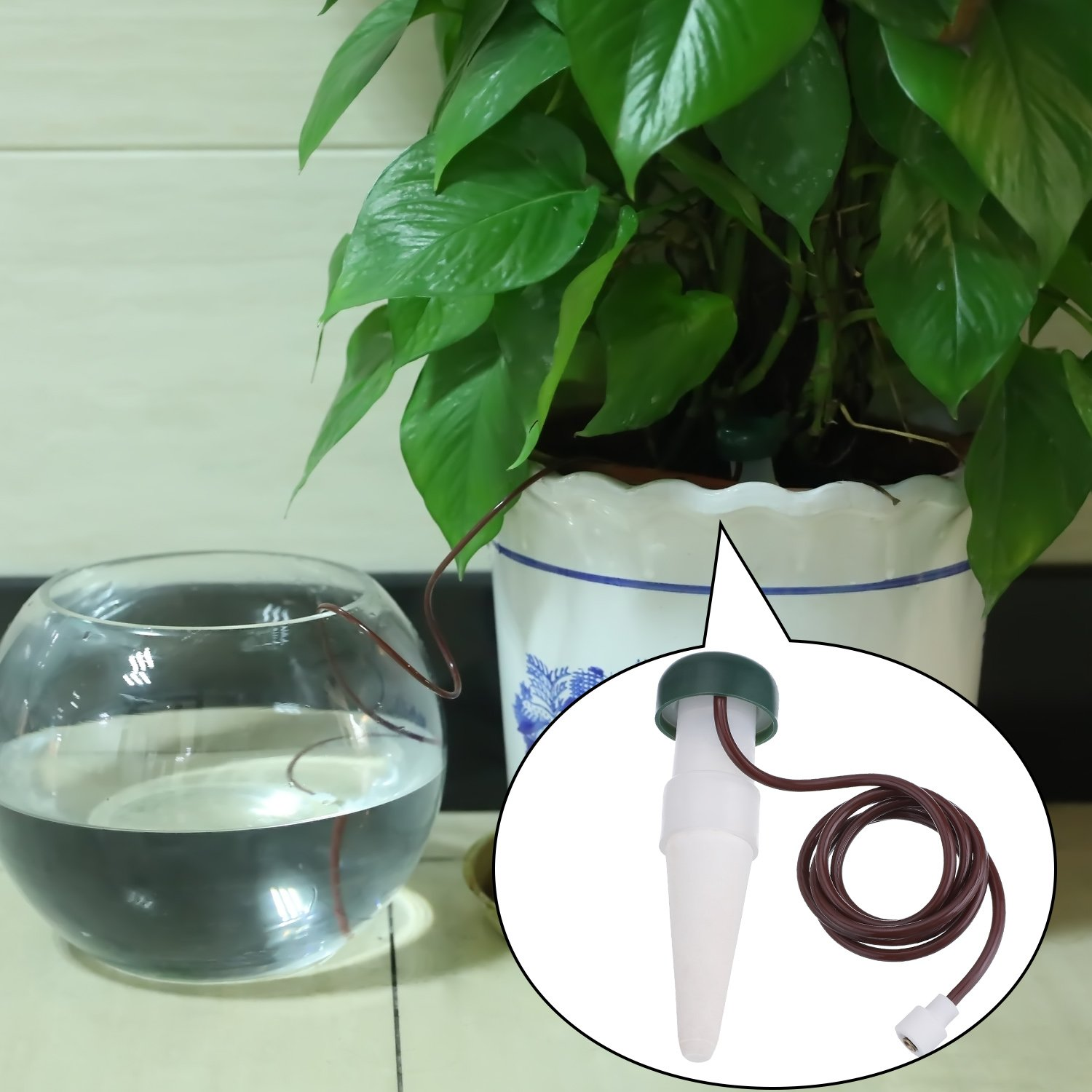 Watering Stakes Automatic Watering System Plant Self Drip Irrigation Slow Release for Indoor or Outdoor Houseplants 5