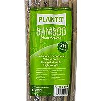 Plant IT 10–4800,9m Bambou Piquets–Beige (lot de 25)
