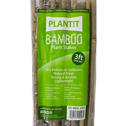 PLANT IT 10-480-055 Estacas de bambú, Paquete de 25 Unidades ...