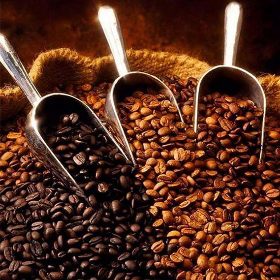 Paletta per pesare la Farina per Uso Quotidiano. in Acciaio Inox Misura a Scelta Paletta per caff/è e t/è Paletta per Gelato
