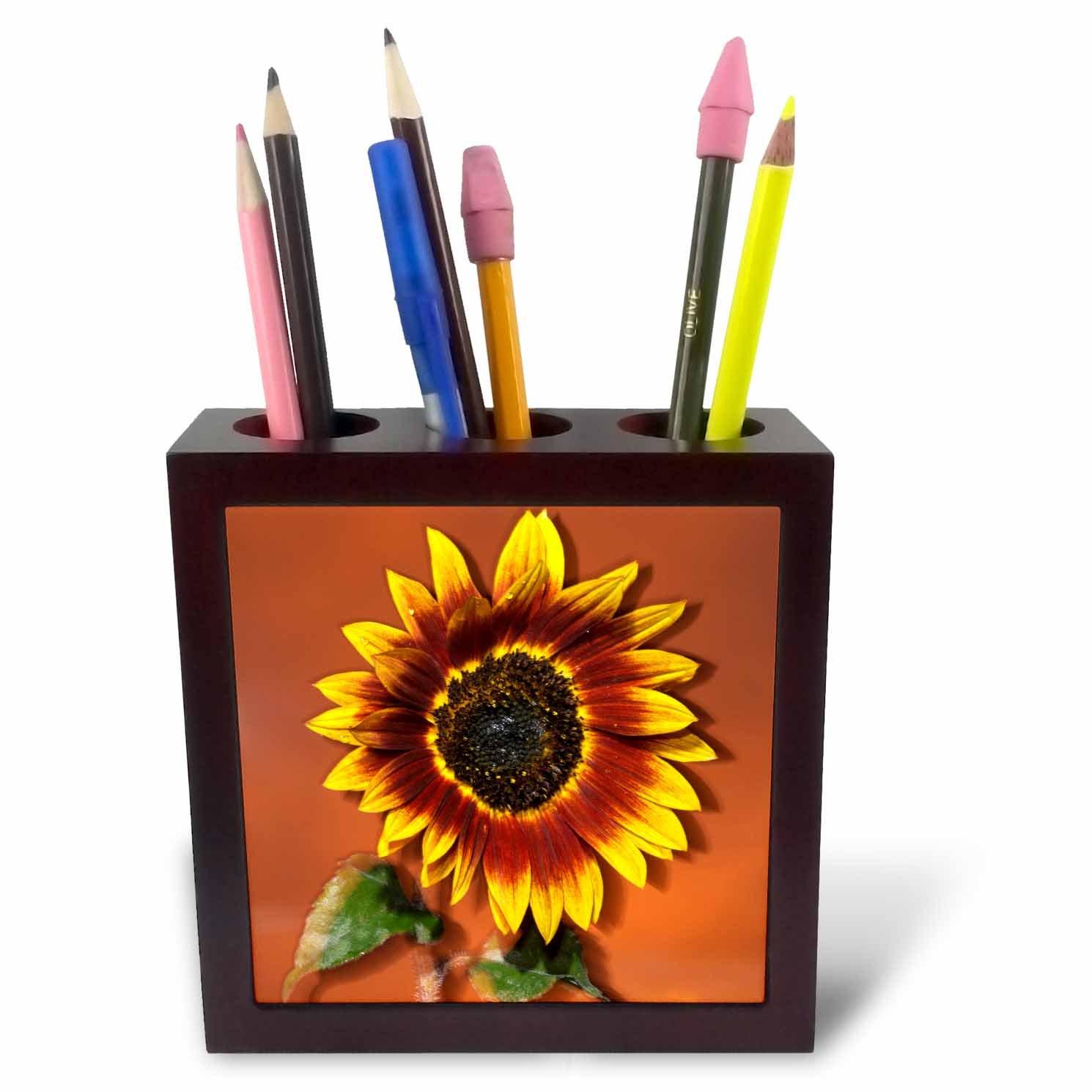 Hybrid Sunflower Jaynes Gallery Tile Pen Holder 3dRose ph/_88162/_1 California US05 BJA0039 5-Inch San Diego