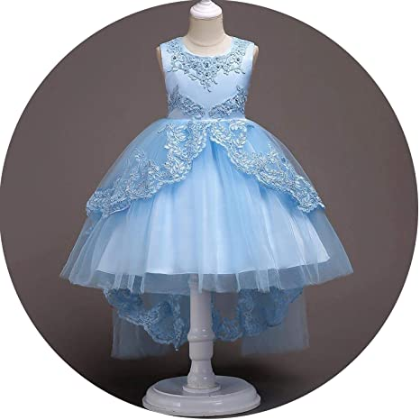 277bb647db5 Amazon.com  Flower Girls Dress Kids Princess Party Wedding Gowns for  Children Graduation Ceremony Baby Kids Long T-àil Formal Wear