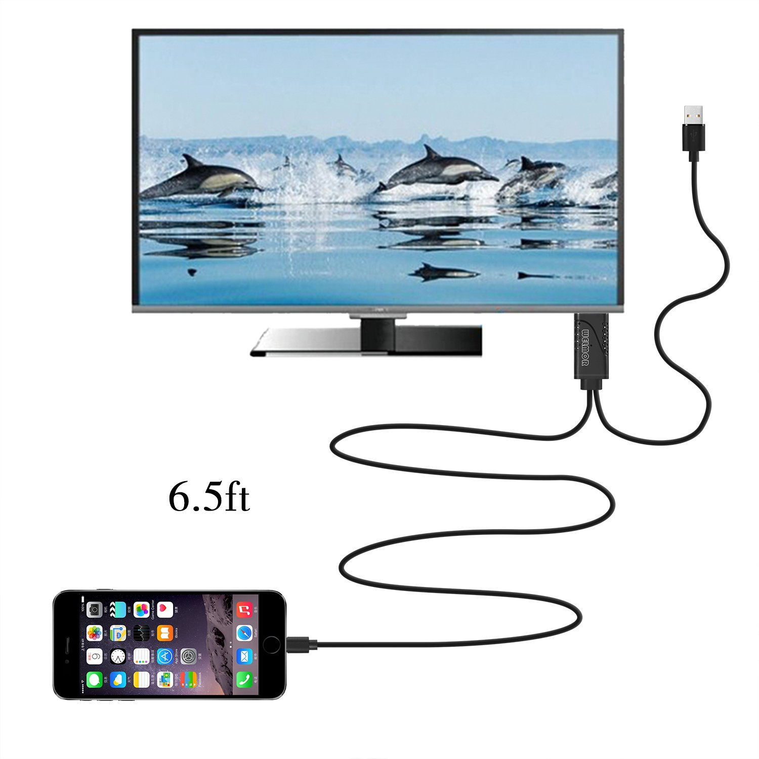 Welmor 6.5ft HDMI Adapter Cable,High Speed HDMI 1080P HDTV Adapter Cord Compatible with iPhone X/8/7/6/plus,iPad,iPod to HDMI Cable ,Plug and Play(Black) by Welmor (Image #6)