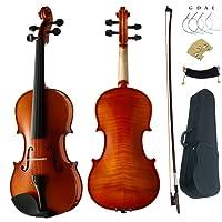 Aliyes Premium Violin 4/4 Full Size Professional Student Violin For Beginner Solid Wood Violin Kit String,Shoulder Rest,Rosin,Bridge(PJB-2)