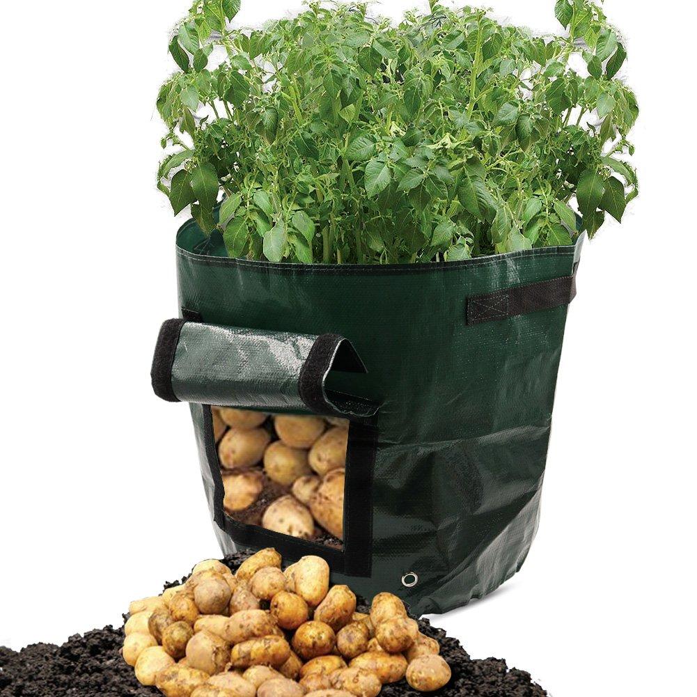 Dreamerd 2-Pack 7 Gallon Grow Bags /Aeration Fabric Pots/Potato Planter Bags with Flap for Grow Vegetables: Potato, Carrot & Onion
