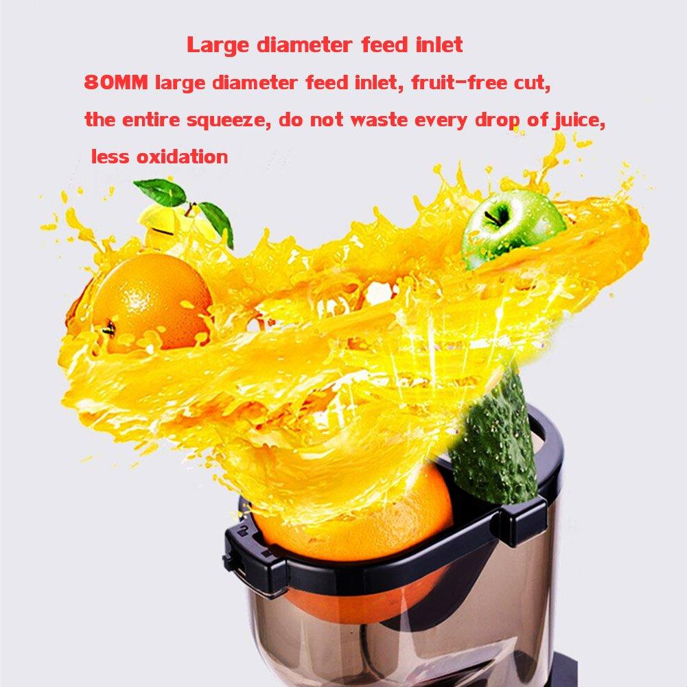 DULPLAY Exprimidor, Lento masticar, Extractor del juicer, Prensa fría exprimidor, Con jarra de jugo y cepillo para limpiar, Jugo de fruta y verdura-rojo ...