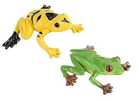 Amazon.com: Safari Ltd Frogs and Turtles TOOB: Toys & Games