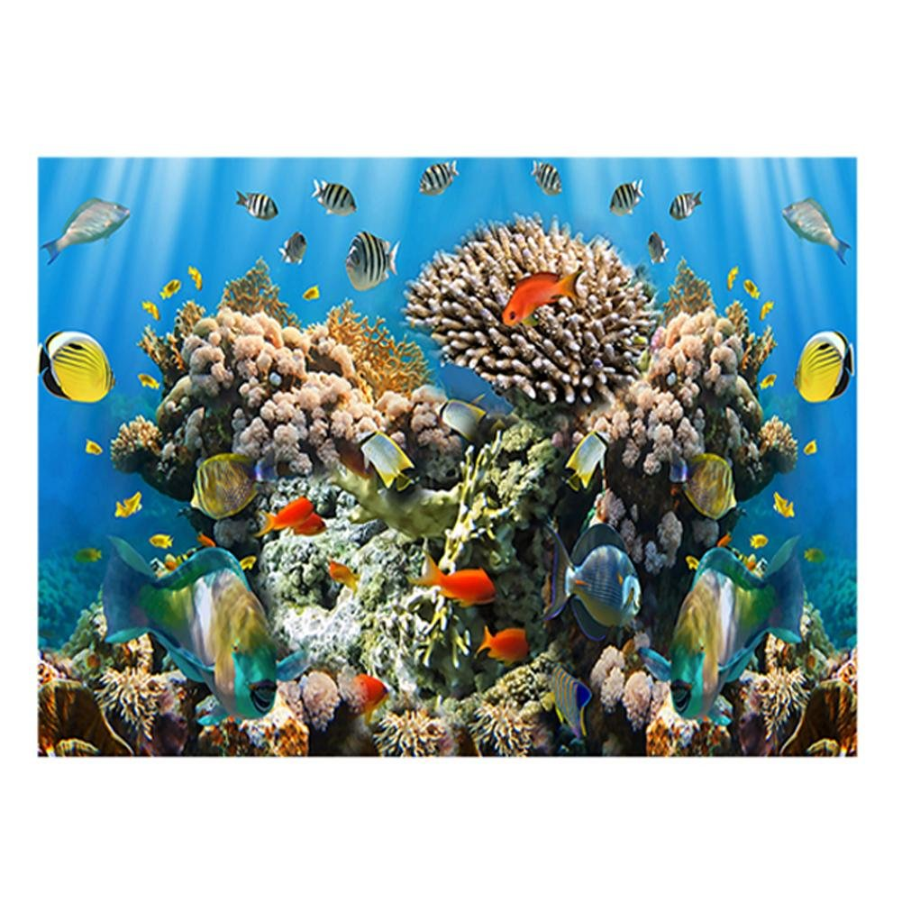 Download 990+ Background Aquarium Poster Paling Keren