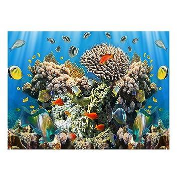 Jannyshop Llustración de Fondo del Acuario Pegatina de Acuario Impermeable con Coral: Amazon.es: Bricolaje y herramientas