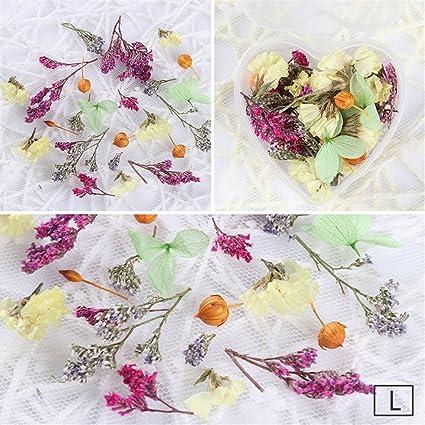 1 caja mixto flores secas Nail Art DIY preservar caja de flores con forma de corazón