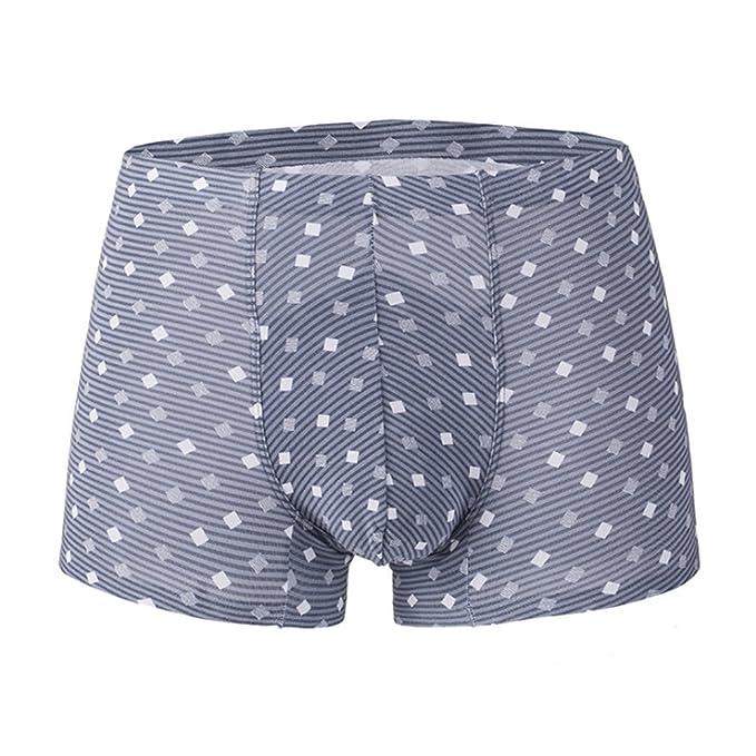 CC SHOP Ropa Interior Masculina Enrejado Pantalones Masculinos Sin Costura Modal Respirable: Amazon.es: Ropa y accesorios
