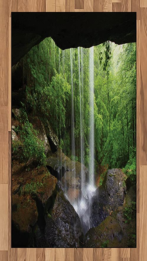 Amazon Com Ambesonne Natural Cave Area Rug Still Waterfall In The Forest In Northern Alabama Habitat Ecosystem Scenery Flat Woven Accent Rug For Living Room Bedroom Dining Room 2 6 X 5 Green Brown