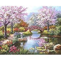Girasool Sakura DIY - Kit per dipingere con i Numeri, Dipinto a Olio Digitale con Tela