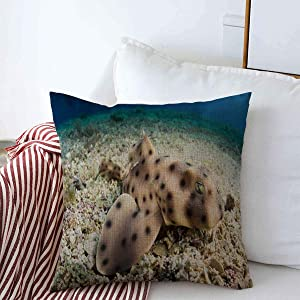 Throw Pillows Covers Cushion Case Bottom Juvenile Horn Shark Rests Motionless Southern On California Channel Islands Scuba Catalina Cotton Linen for Fall Couch Home Decor 16 x 16 Inches