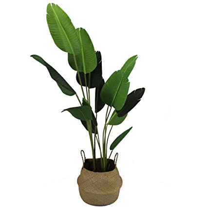 Amazon Com Artificial Silk Bird Of Paradise Palm Tree Potted Tree