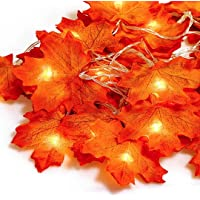 Hojas de otoño, Ainkedin guirnalda otoño, 20 luces led decoracion, Luces decoracion halloween, Adornos navidad…