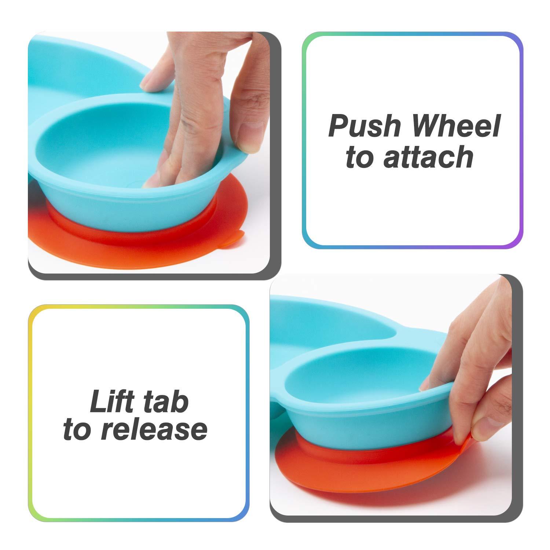 Sp/ülmaschinen- und mikrowellengeeignete tragbare Baby-Platten f/ür Kleinkinder und Kinder BPA-frei FDA-Zulassung Starke Saugplatten f/ür Kleinkinder Qshare Kleinkind-Platte