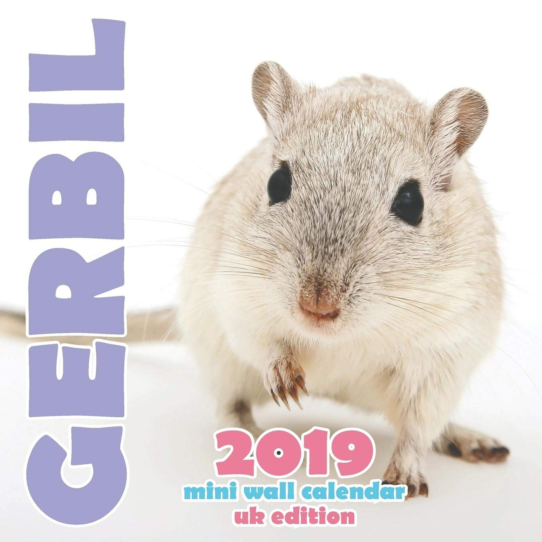 Gerbil 2019 Mini Wall Calendar (UK Edition): Amazon co uk