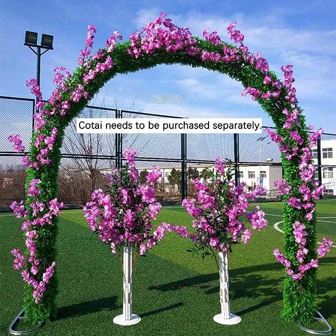 SUNNAIYUAN Decoración de la Boda del Arco del jardín del Metal Planta trepadora Gazebo múltiples Colores for Elegir (Color : B): Amazon.es: Joyería