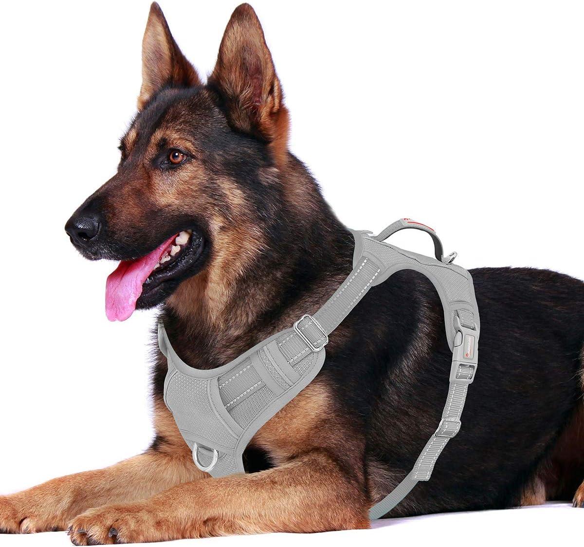 BARKBAY No Pull Dog Harness Review
