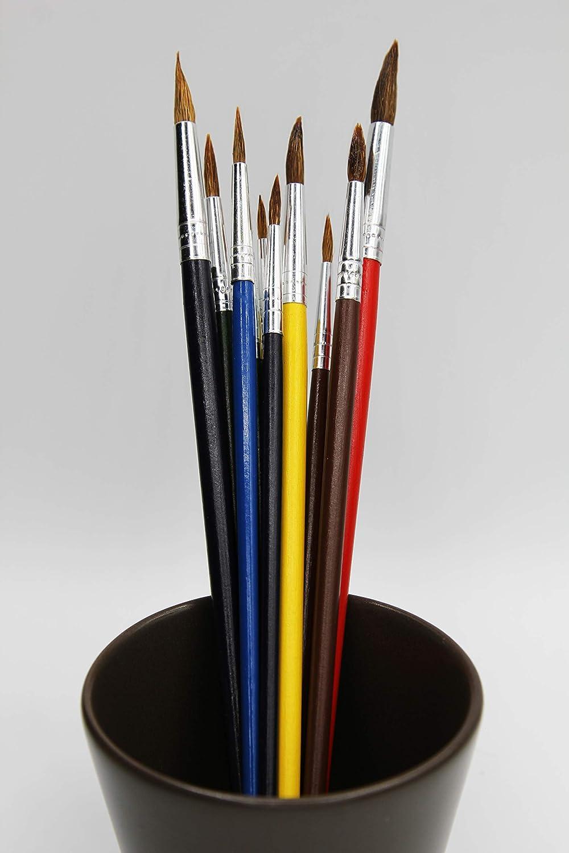 Acrilico e Olio Set di 12 pennelli Colorati con setole di Lana e pennelli per Pittura ad Acquerello Set per Pittura per artisti iniziali Hilvard