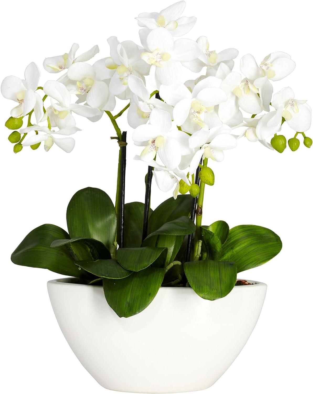 Amazon Com Nearly Natural 4804 15in Phalaenopsis Silk Flower Arrangement White 14 5 X 11 X 4 5 Home Kitchen