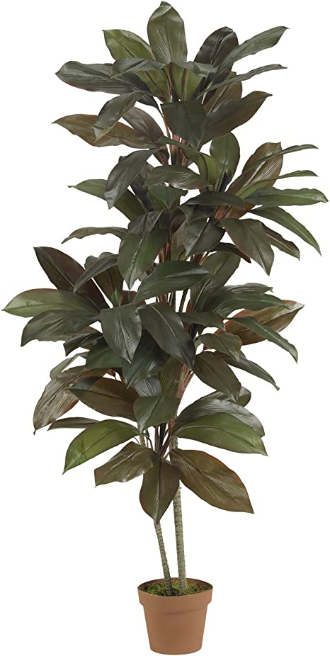 Amazon Com Nearly Natural 6580 Cordyline Silk Plant Real Touch 5 Feet Green Home Kitchen