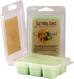 6 Block Clam Shell Package Gifts For Her 100/% Soy Wax Woodland Citrus Scented Soy Wax Melts