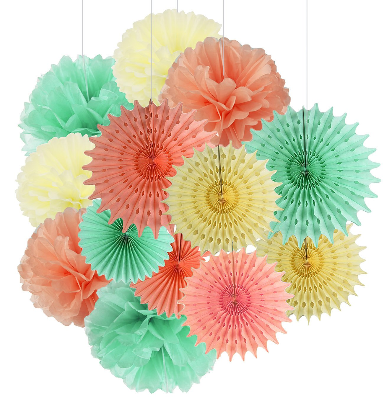 Qians Party 13pcs Mint Peach Cream Tissue Paper Fan Tissue Pom Pom