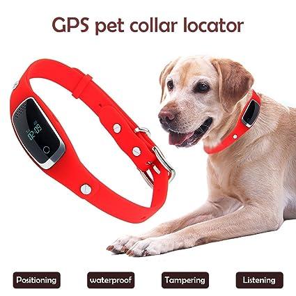 Amazon com: FidgetFidget Dog GPS Tracker Pet GPS Collar S1