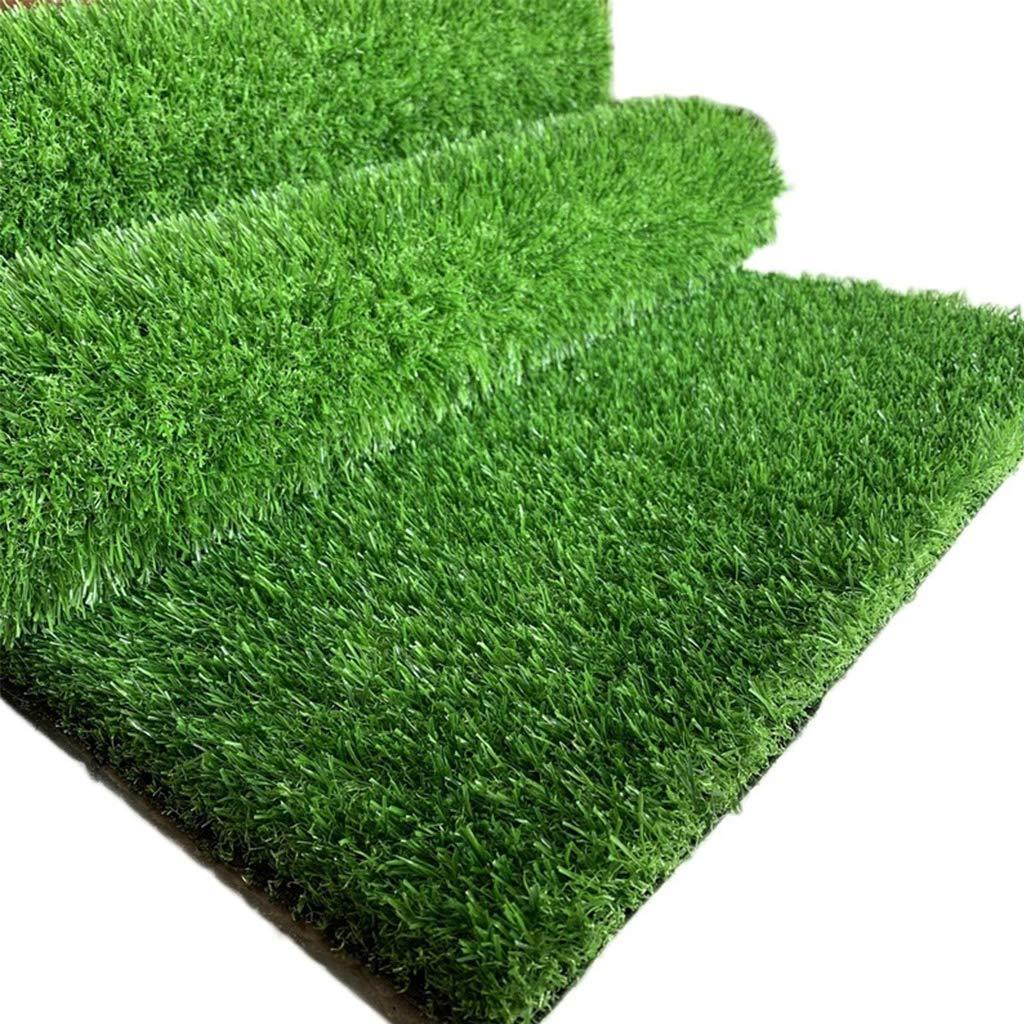 25ミリメートル杭高さ厚い人工芝、ナチュラル&リアルな偽の芝生芝生ガーデンゴルフ幼稚園用に最適、あなたのサイズを選びました B07S829ZJH  2x5m