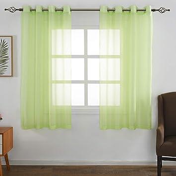 FLOWEROOM Transparent Voile Gardinen - Einfarbige Durchsichtig Vorhänge mit  Ösen für Wohnzimmer 175x140 cm Apfelgrün 2er Set