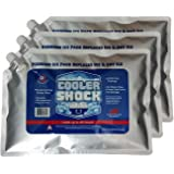 "3 Pack Large 18°F Cooler Ice Packs 10"" by 14"" - No More Ice! Replaces 18 lbs. of Ice and is Reusable - Easy Fill - You Add Water and Save! 12 lbs. Total When Filled (Screw Cap)"