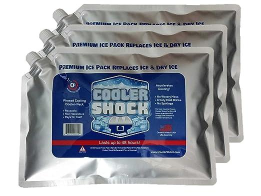 3 x LG. Cero ° F Cooler Enfriador de hielo Congelar el paquete 10 ...
