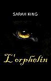 L'Orphelin (Les enquêtes d'Olivia Kasner t. 13)
