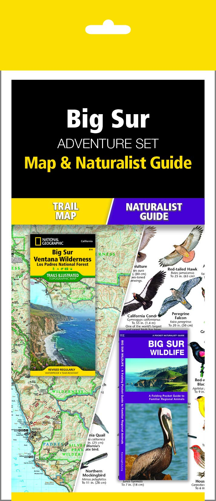Big Sur Adventure Set: Trail Map & Wildlife Guide: Waterford ...