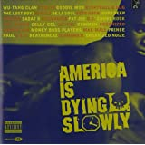 America Is Dying Slowly (Enhan [Import allemand]