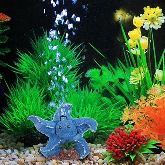 Logres Bomba Hidropónica Estrella Difusor Acuario Pecera Tanque Burbuja Aerador de Piedra Aérea: Amazon.es: Productos para mascotas