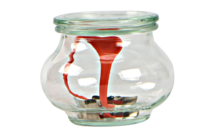 Weck Pot à Liqueur 1Litre avec Couvercle de 100mm, complets de Joint et Clips, boîte de 4pièces, Verre, Transparent 3286400