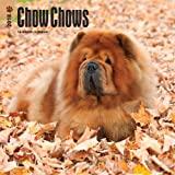 Chow Chows 2018 12 x 12 Inch Monthly Square Wall Calendar, Animals Dog Breeds