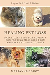 Healing Pet Loss: Practical Steps for Coping and Comforting Messages from Animals and Spirit Guides Second Edition (Healing Pet Loss Series) (Volume 1)