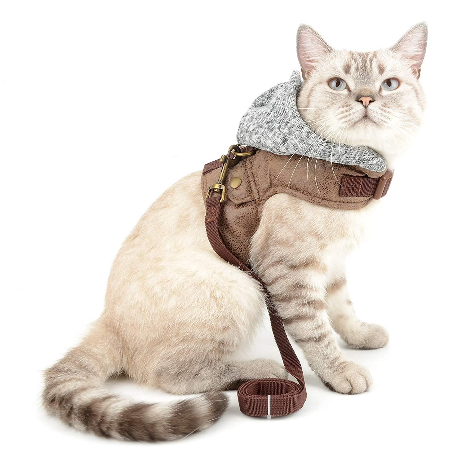 SMALLLEE/_LUCKY/_STORE Bone Print Striped Cat and Small Dog Harness Hoodie with Leash Adjustable No Pull Escape Proof Soft Padded Walking Jacket Grey Hood Small Puppies Kitten Harness Vest