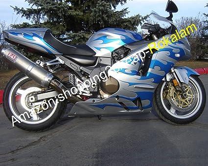 ZX-12R - Carenado para motocicleta Kawasaki Ninja ZX12R 2002 ...